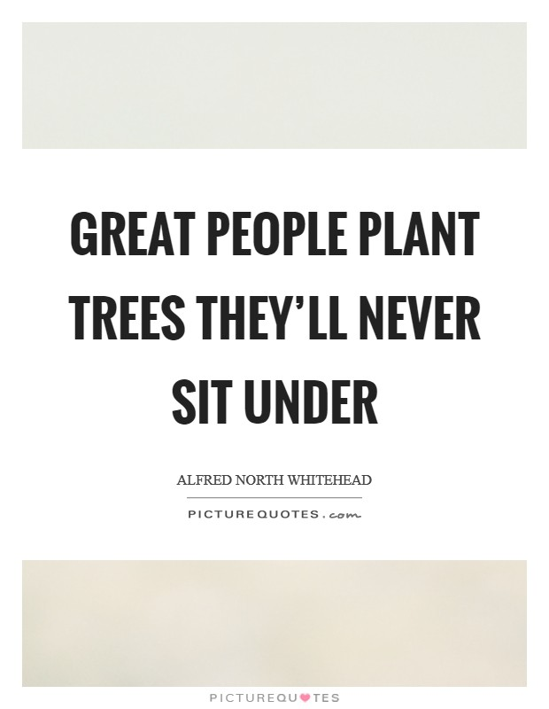 Great people plant trees they'll never sit under Picture Quote #1