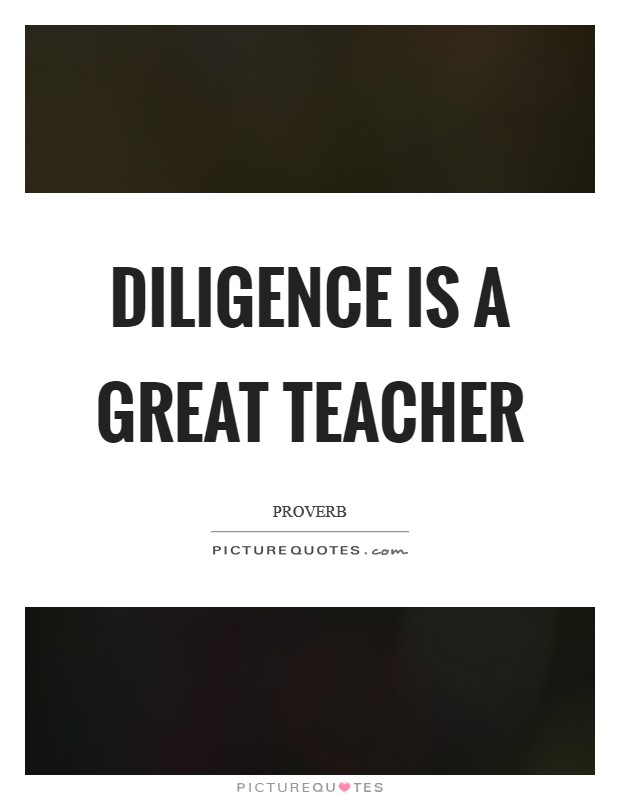 Diligence is a great teacher Picture Quote #1