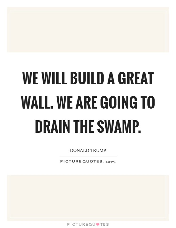 We will build a great wall. We are going to drain the swamp Picture Quote #1