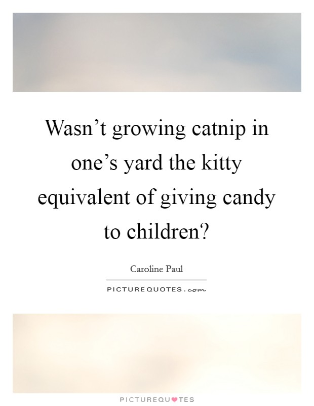 Wasn't growing catnip in one's yard the kitty equivalent of giving candy to children? Picture Quote #1