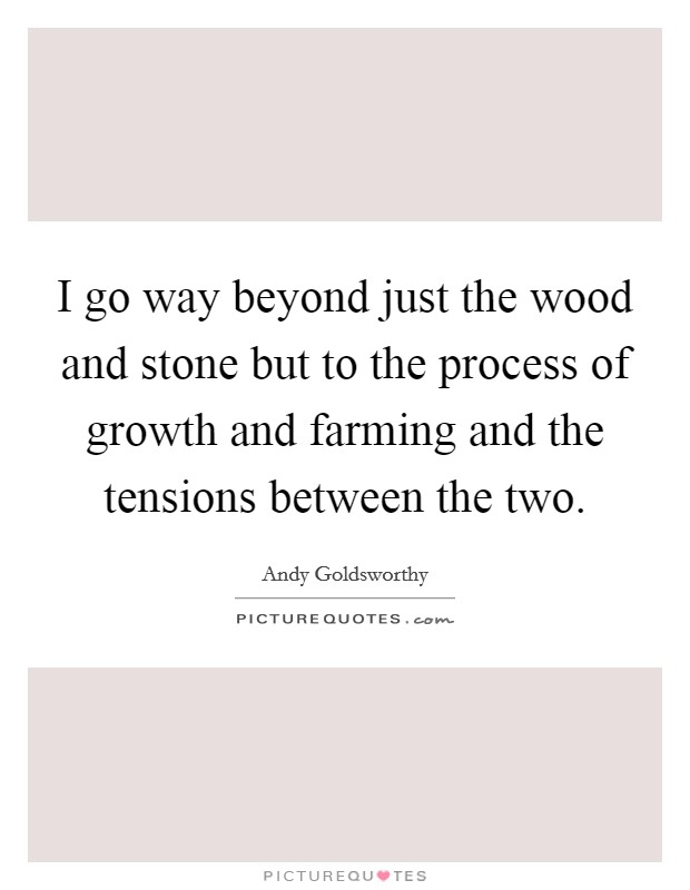 I go way beyond just the wood and stone but to the process of growth and farming and the tensions between the two Picture Quote #1