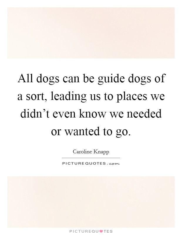 All dogs can be guide dogs of a sort, leading us to places we didn't even know we needed or wanted to go. Picture Quote #1