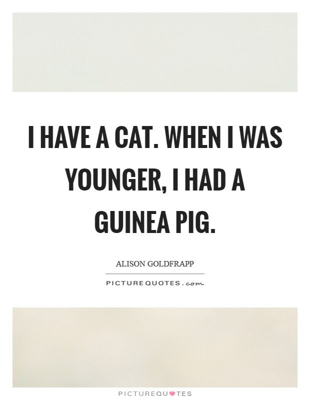I have a cat. When I was younger, I had a guinea pig Picture Quote #1