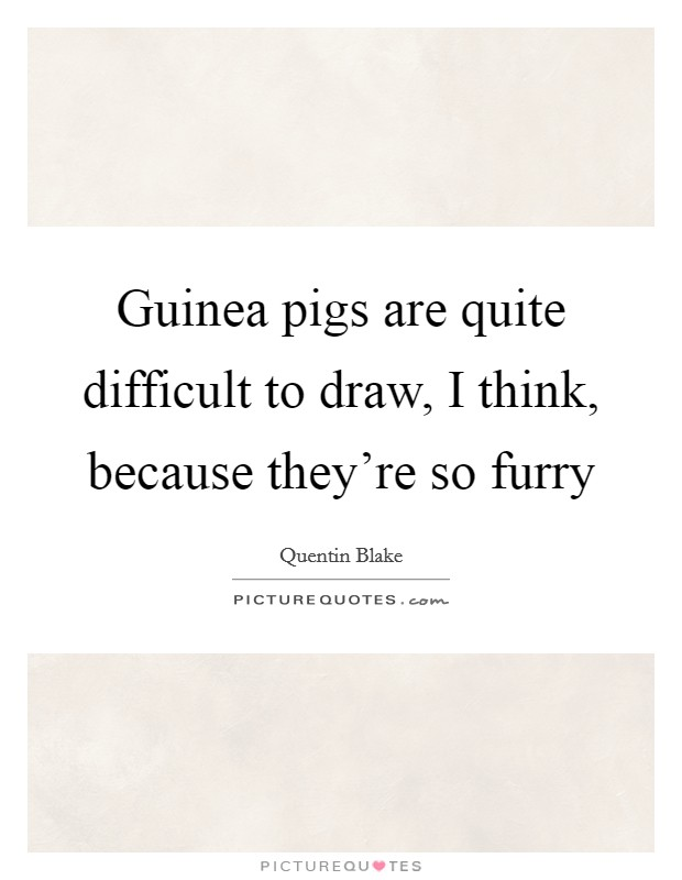 Guinea pigs are quite difficult to draw, I think, because they're so furry Picture Quote #1