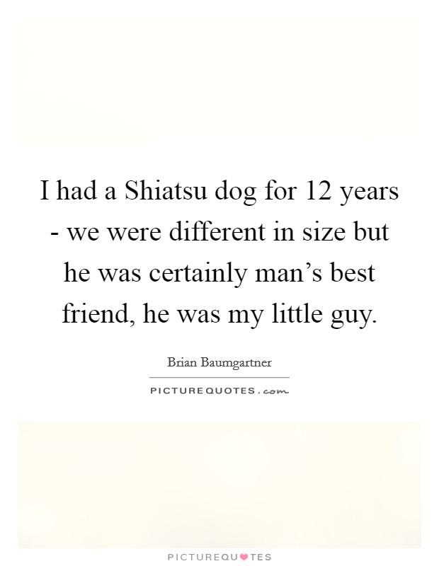 I had a Shiatsu dog for 12 years - we were different in size but he was certainly man's best friend, he was my little guy Picture Quote #1