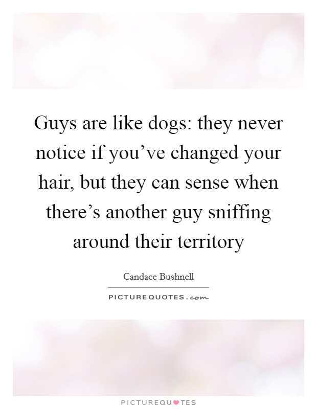Guys are like dogs: they never notice if you've changed your hair, but they can sense when there's another guy sniffing around their territory Picture Quote #1