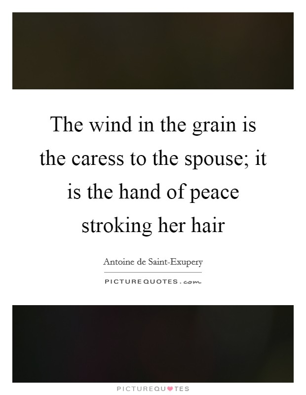 The wind in the grain is the caress to the spouse; it is the hand of peace stroking her hair Picture Quote #1