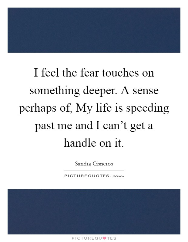 I feel the fear touches on something deeper. A sense perhaps of, My life is speeding past me and I can't get a handle on it Picture Quote #1