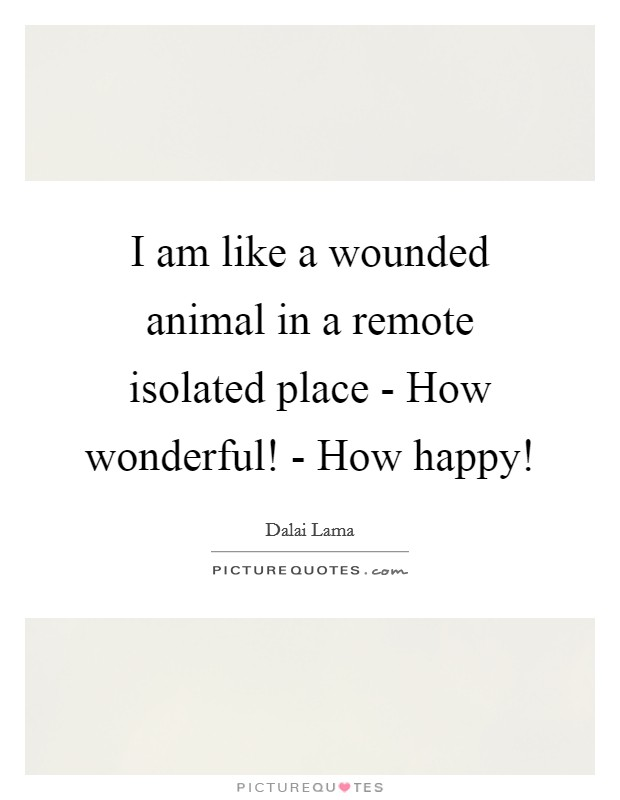 I am like a wounded animal in a remote isolated place - How wonderful! - How happy! Picture Quote #1