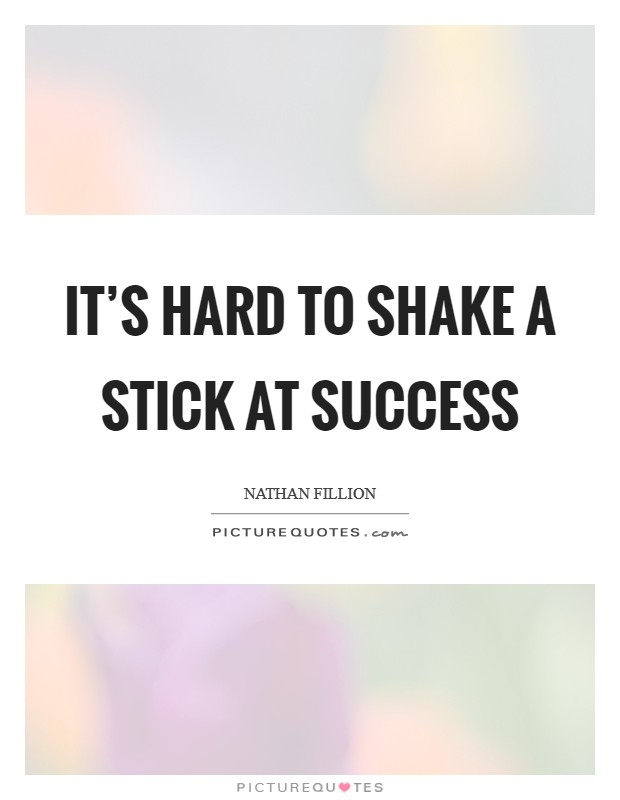 It's hard to shake a stick at success Picture Quote #1