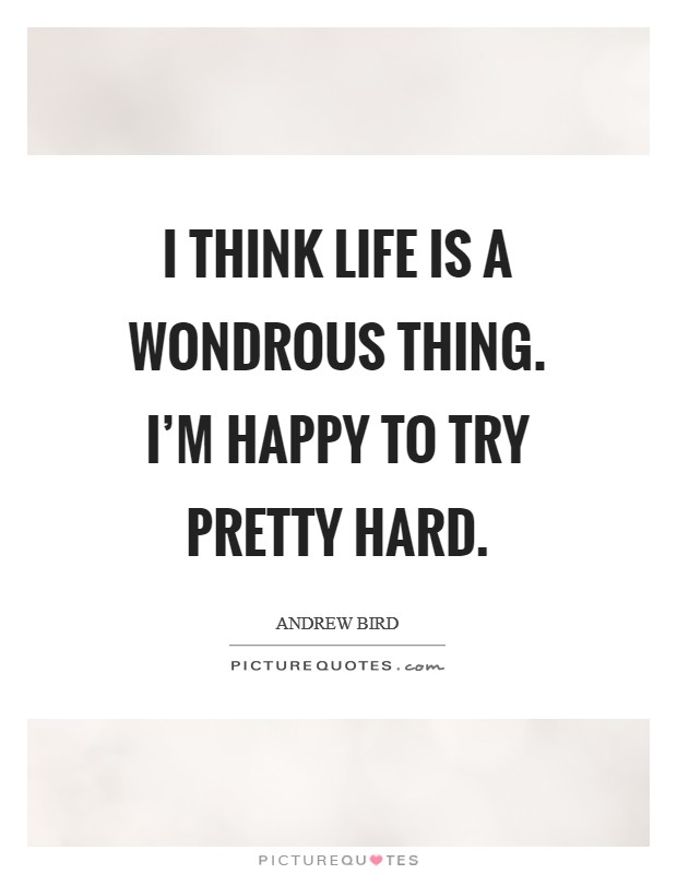 I think life is a wondrous thing. I'm happy to try pretty hard Picture Quote #1