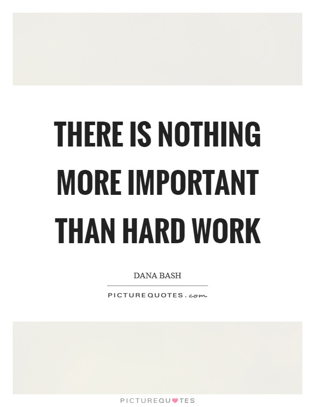 There is nothing more important than hard work Picture Quote #1