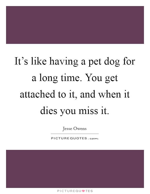 It's like having a pet dog for a long time. You get attached to it, and when it dies you miss it Picture Quote #1