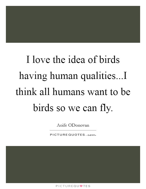 I love the idea of birds having human qualities...I think all humans want to be birds so we can fly Picture Quote #1
