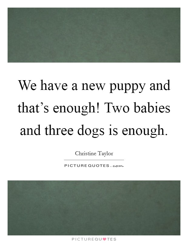 We have a new puppy and that's enough! Two babies and three dogs is enough Picture Quote #1