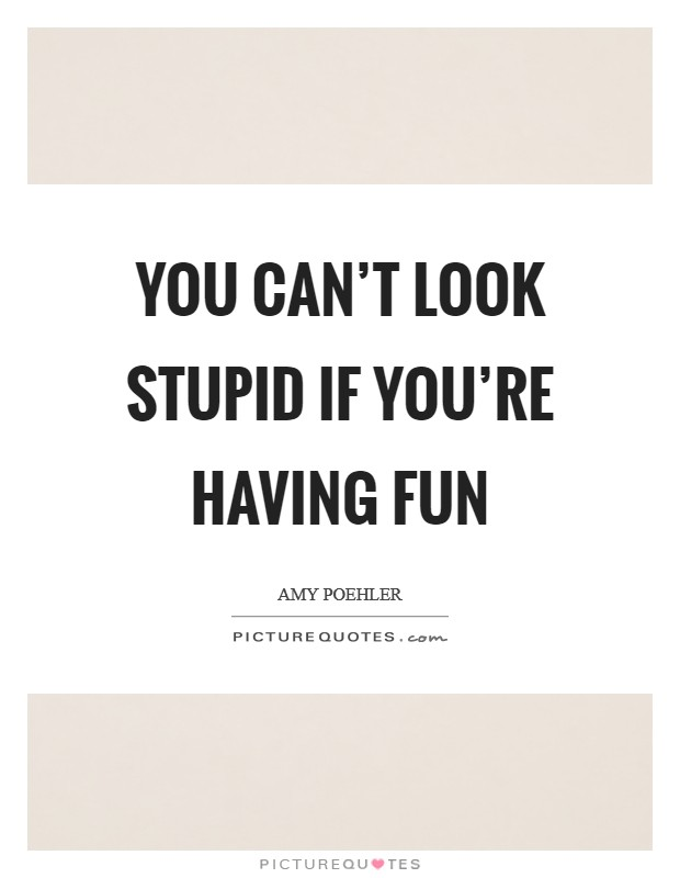 You can't look stupid if you're having fun Picture Quote #1