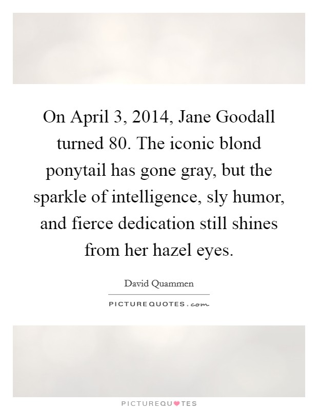 On April 3, 2014, Jane Goodall turned 80. The iconic blond ponytail has gone gray, but the sparkle of intelligence, sly humor, and fierce dedication still shines from her hazel eyes Picture Quote #1