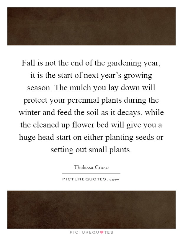 Fall is not the end of the gardening year; it is the start of next year's growing season. The mulch you lay down will protect your perennial plants during the winter and feed the soil as it decays, while the cleaned up flower bed will give you a huge head start on either planting seeds or setting out small plants Picture Quote #1