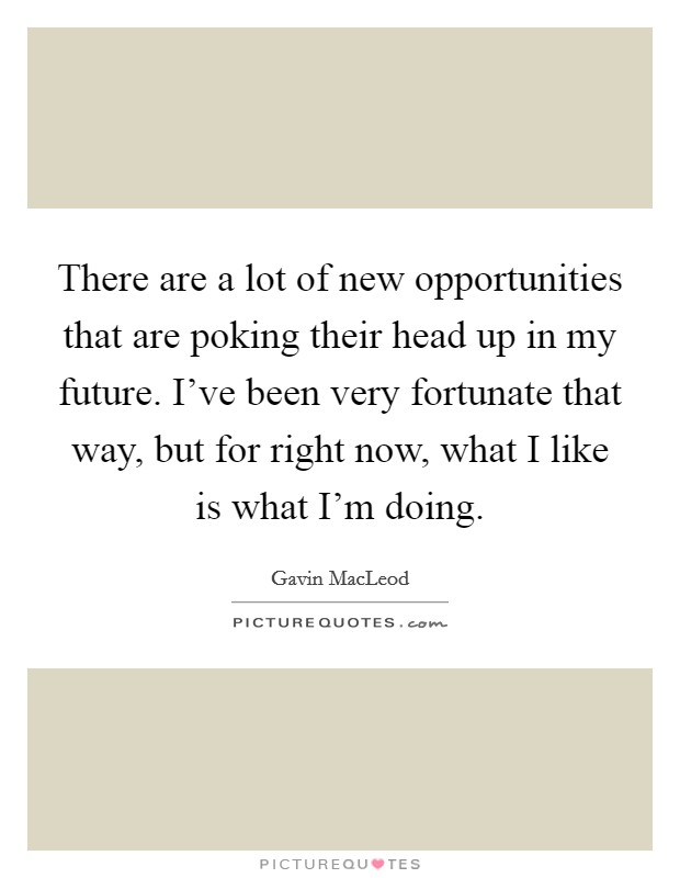 There are a lot of new opportunities that are poking their head up in my future. I've been very fortunate that way, but for right now, what I like is what I'm doing Picture Quote #1