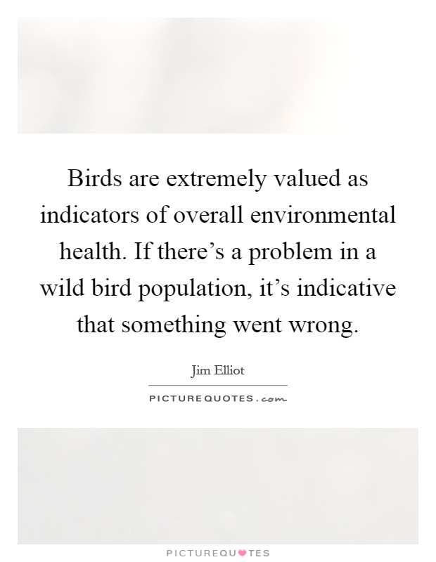 Birds are extremely valued as indicators of overall environmental health. If there's a problem in a wild bird population, it's indicative that something went wrong Picture Quote #1