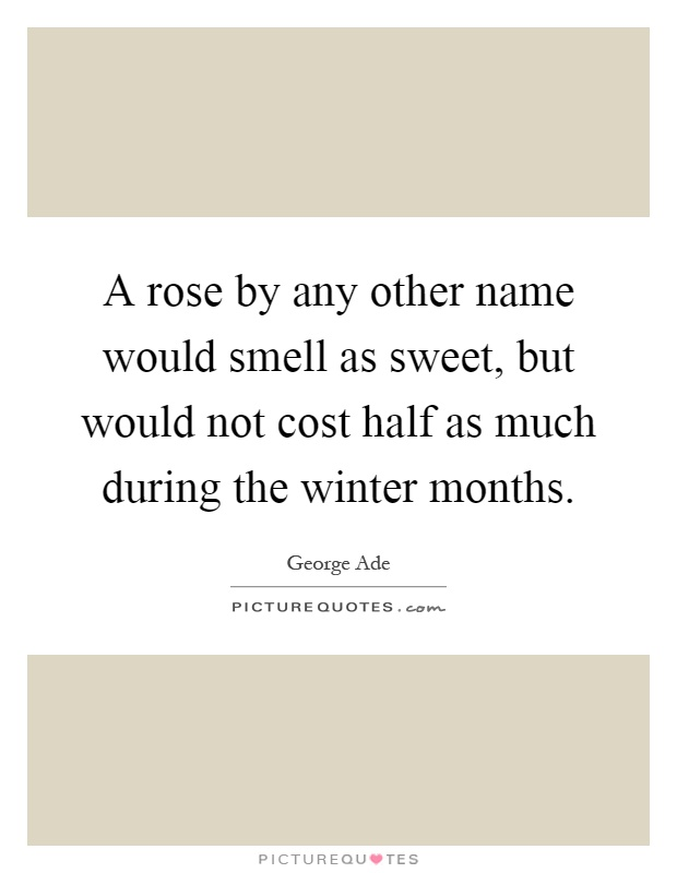 A rose by any other name would smell as sweet, but would not... | Picture Quotes