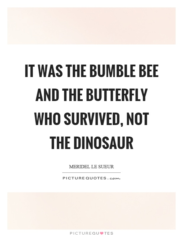 Lyric bumble bee song lyrics : Bee Quotes | Bee Sayings | Bee Picture Quotes