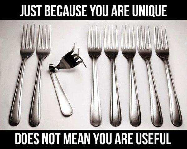 Image result for just because you are unique doesn't mean you are useful
