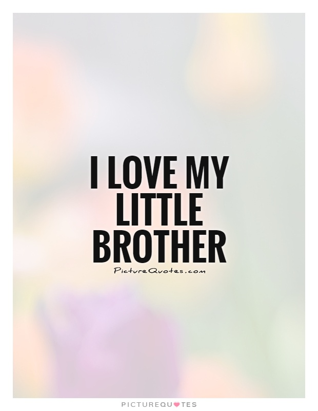 Funny Brother Quotes And Sayings Quotesgram Sokolvineyardcom