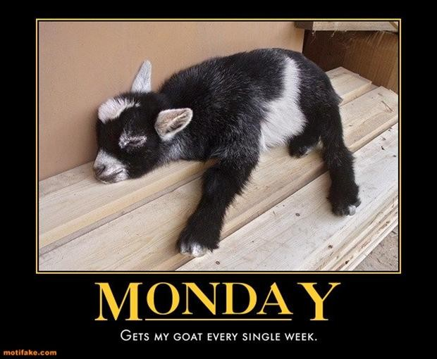 Funny Monday Quote | Quote Number 612007 | Picture Quotes
