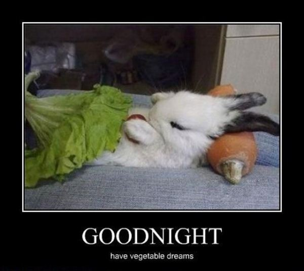 Funny Good Night Quote | Quote Number 665851 | Picture Quotes